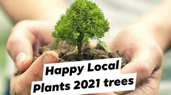eco friendly online shop