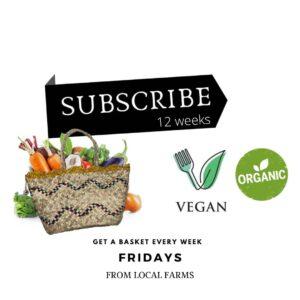 Basket of bio vegetables - subscribe