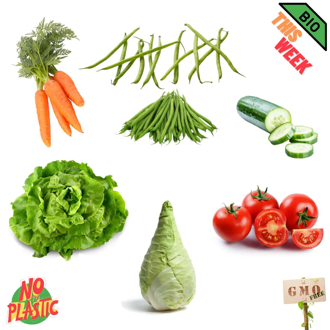 bio local vegetables